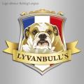 Logo Lyvanbull's