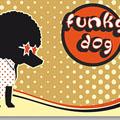funky dog52