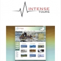 INTENSE TOURS logo - site