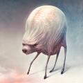 cochon-cerveau