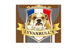 Lyvanbull's